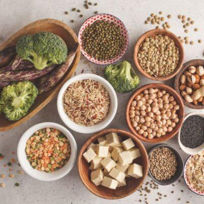 Plant-Based Protein: All You Need to Know