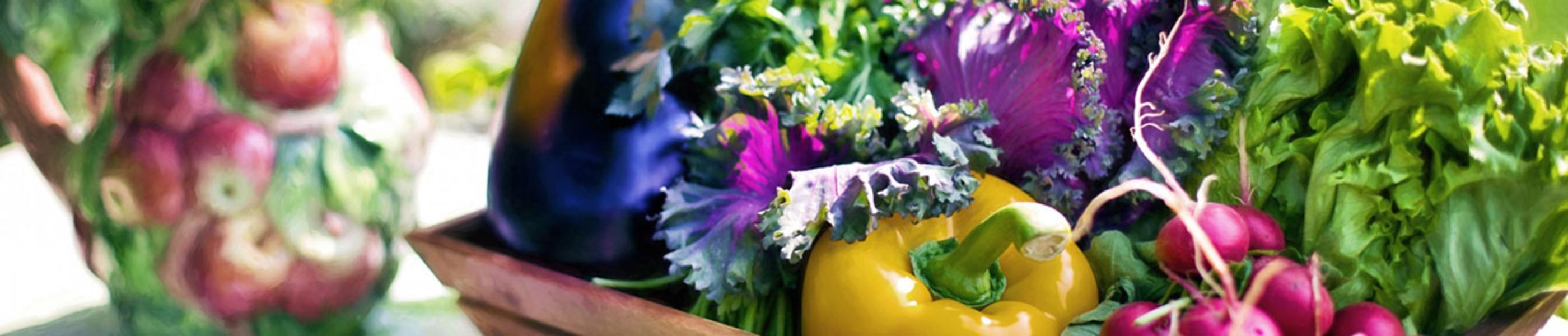 organic-vegetables-2-2800x600_update